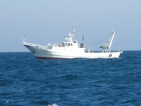 Schiffsverkehr in der Adria_4