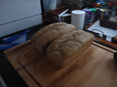 backfrisches Brot