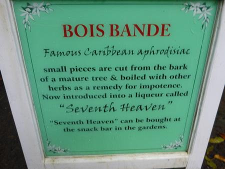 Bois Bonde