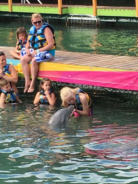 Delphinarium auf Tortola