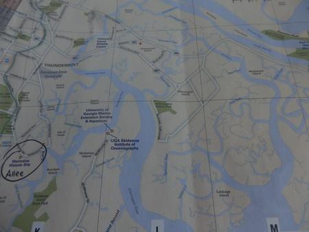 Savannah Flußdelta