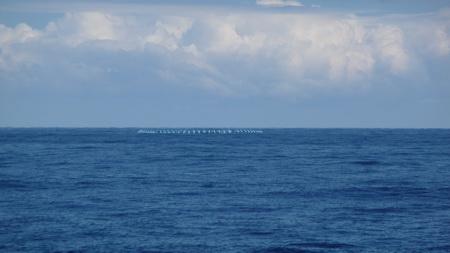 Algerische Fischer mit Ringnetz-1