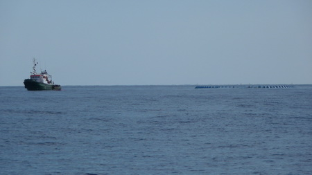 Algerische Fischer mit Ringnetz-4