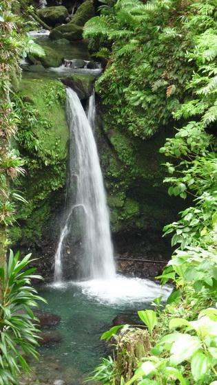 Dominica-Ausflug-13