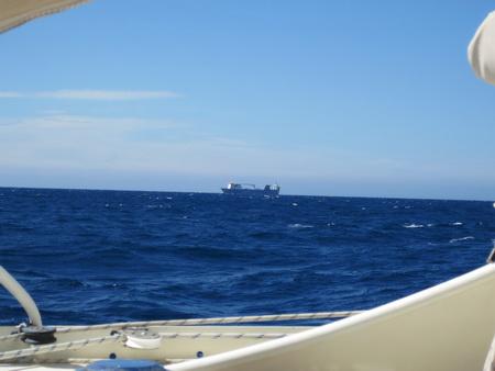 Frachter AL HURREYA unterwegs nach Annaba