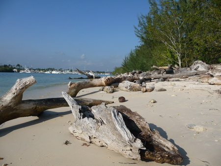 Lagune Boca Chicha_2