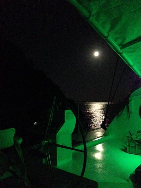 Nachts im Cockpit