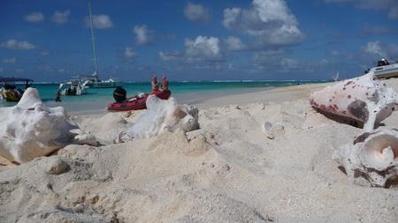 Prickly Pear_Anguilla-8