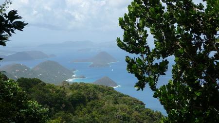 Regenwald-Wanderung auf Tortola-1110787