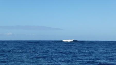 Riff in der Nähe