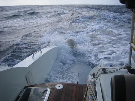 Segeln im Maltakanal