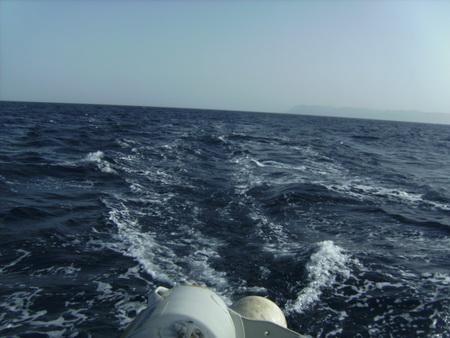 Segeln bei 25kn Wind