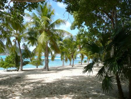 Spaziergang auf Moskito Island-1200842