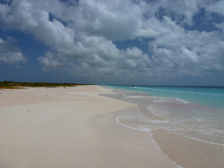 Strandwandrung Low Bay_Barbuda-1000256