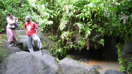 Trafalgar Wasserfälle _Dominica-9