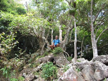 Wanderung zum Quill-Krater_Statia-1195