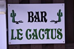 "Kaktus-Bar vom ""Chefkoch"""